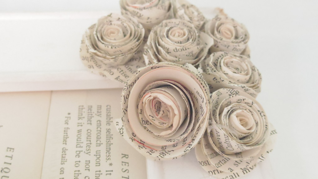 rossettes-1024x575