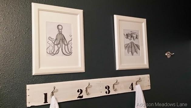 octopus clam