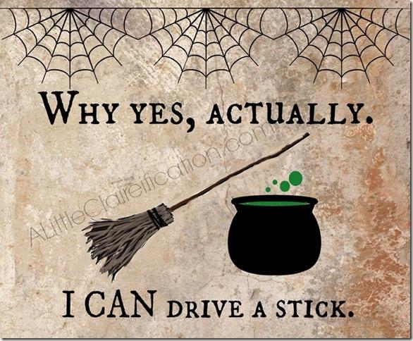 Can-Drive-A-Stick_Wtrmrk